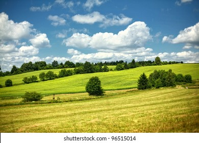 Rolling hills green meadow with trees on sunny summer day with blue sky in Czech Republic