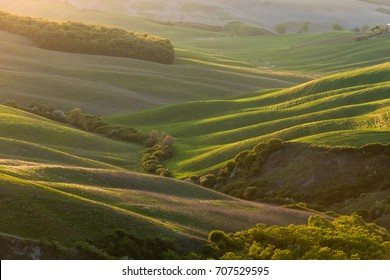 Rolling hills landscape in warm light, Tuscany, Italy