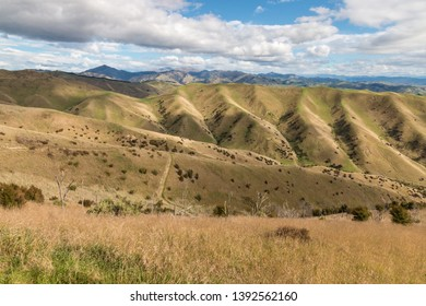 rolling hills landscape at Wither Hills park in Blenheim, South Island, New Zealand