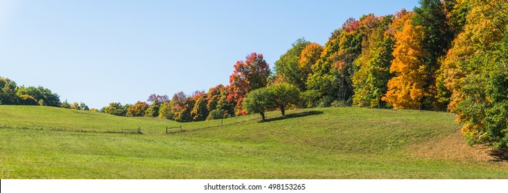 rolling hills on a farm meadow  in fall with trees showing autumn foliage colors