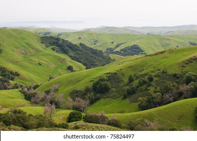 Rolling Hills and the Pacific Coast near Templeton, California