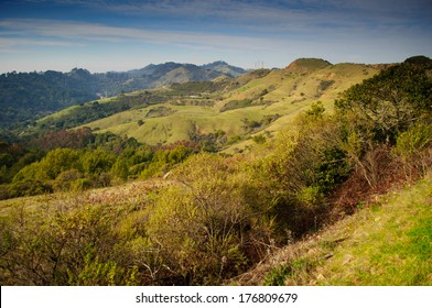Rolling hills in Sibley Regional Park in the Berkeley/Oakland hills, California.