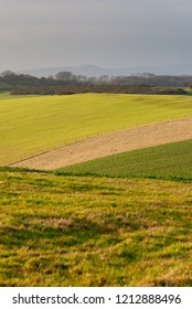 Rolling hills of the South Downs north of Brighton