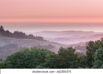Rolling Hills Sunset. Russian Ridge Open Space Preserve, San Mateo County, California, USA.