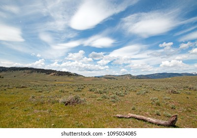 Rolling Hills under cirrus lenticular cloudscape in northern Yellowstone National Park in Wyoming USA