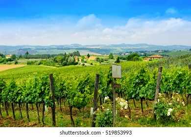 Rolling hills, vineyards and beautiful countryside in Tuscany, Italy.
