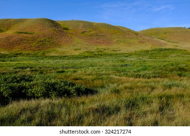 Rolling hills in western high-grass prairie with lush green and purple vegetation