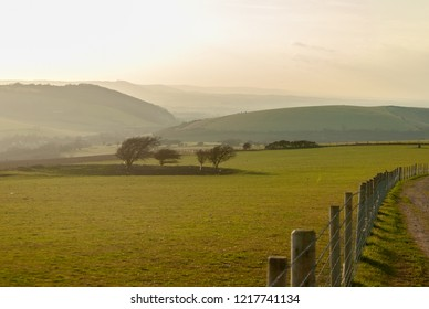 Rolling landscape of the South Downs in late afternoon sunlight