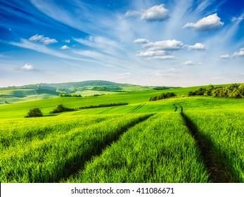 Rolling summer landscape with green grass field under blue sky