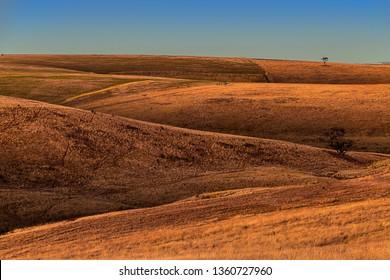 Rolling sunburnt hills under a summer's sunset in Boorabool Victoria