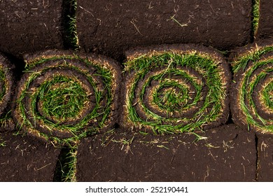 Rolls of fresh grass turf ready to be used for gardening