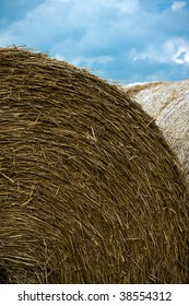 Rolls of hay after cutting with cloud background