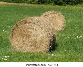 rolls of hay bales