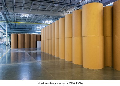 Rolls of paper in warehouse of printing plant