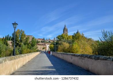 Roman Bridge and Salamanca Cathedral in the autumn, Salamanca, Spain