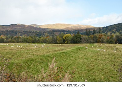Roman Earthworks at Callander, in Perthshire.