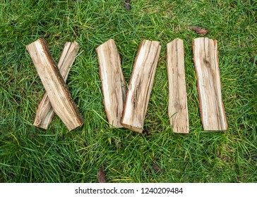 Roman numeral. Roman numerals made from oak. Old wood numbers. Old roman antique alphabet number on green grass background. Number seventeen.