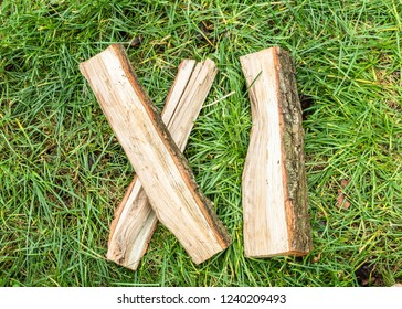 Roman numeral. Roman numerals made from oak. Old wood numbers. Old roman antique alphabet number on green grass background. Number eleven.
