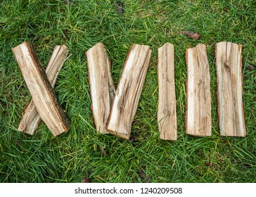 Roman numeral. Roman numerals made from oak. Old wood numbers. Old roman antique alphabet number on green grass background. Number eighteen.