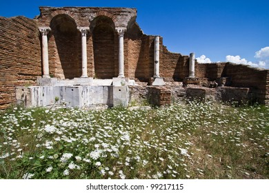 Roman ruins at Ostia Antica with white flowers