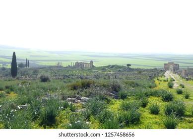 Roman ruins of Volubilis ini Northern Morocco
