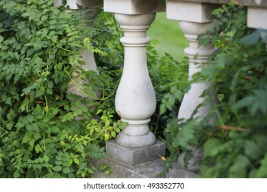 Roman Stone Or Cement Columns And Pillars As Part Of Overgrown Railing In  Garden With Ivy