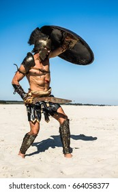 The Roman warrior in the desert is covered by a heavy shield.