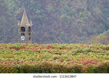 Romanesque bell tower and autumnal vineyard. Italy, Province of Imperia
