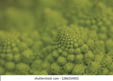 Romanesque cauliflower logarithmic spirals close up