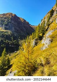 Romania, Bucegi Mountains, Cerbului Valley