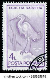 ROMANIA - CIRCA 1991: A stamp printed in the Romania, shows the Little Egret (Egretta garzetta), circa 1991