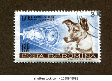 Romania stamp no circa date: a stamp printed in Romania shows The animal astronaut, a dog named Laika, The first space travel.
