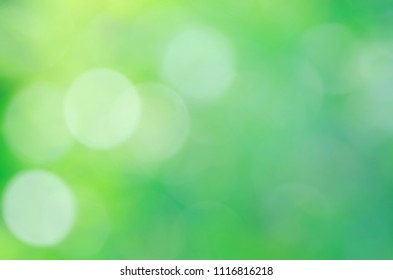 Romantc yellow white green color bokeh sunlights backgrounds