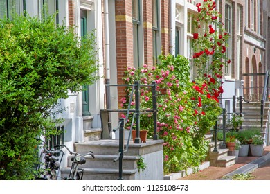 Romantic Amsterdam in summer