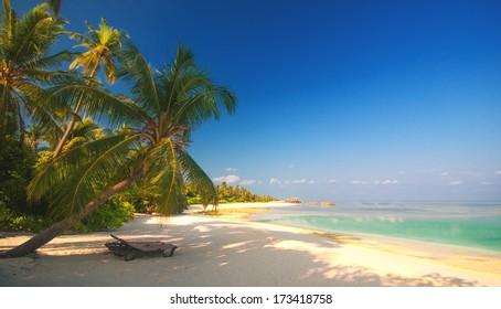 romantic beach scenery on the maldives