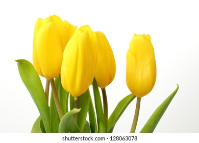 Romantic bouquet of flowers yellow tulips on Holiday theme