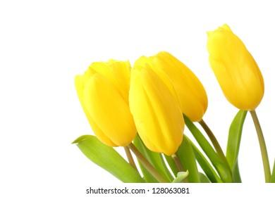 Romantic bouquet of yellow tulips