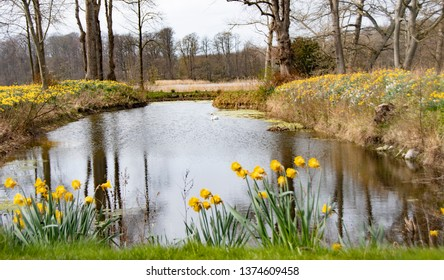 Romantic Danish lake with a beautiful view on a spring day