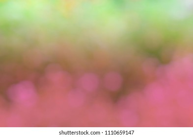 Romantic dream style with green and pink color bokeh lights background
