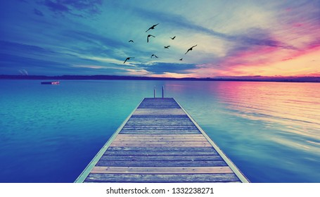 romantic evening at the beach - wooden jetty with birds
