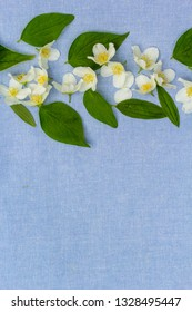 Romantic floral backgorund