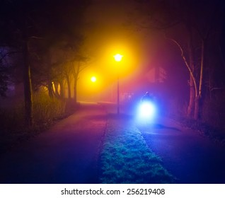 Romantic foggy night walk in a park with street lights (toned, diffused)