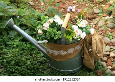 romantic fresh flowers in the pot for home decor, weddings, fiancés.