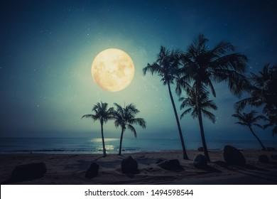 Romantic night scene - beautiful fantasy tropical beach with star and full moon in night skies.