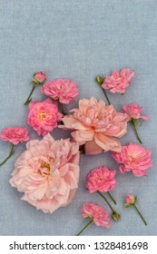 Romantic, rosies on the blue background