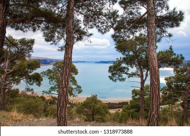 Romantic Sea Landscape with Pine Trees and Clouds Georgian blue water nature view