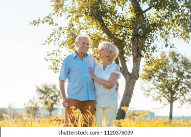 Romantic senior couple holding hands while walking together on a field in the countryside in summer
