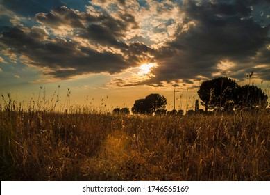 Romantic sunset at the Centocelle Park. Centocelle district of Rome