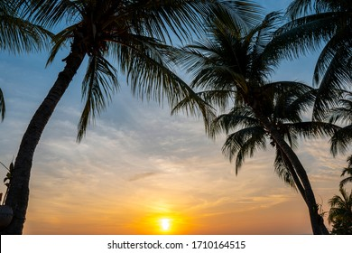 Romantic sunset with palm trees on the beach