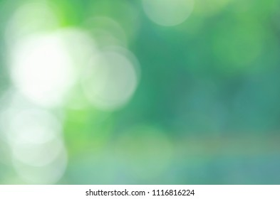 Romantic white green bokeh sunlights abstract backgrounds and texture